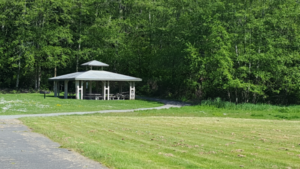 Wittier Park Covered picnic area