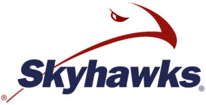 Logo with design of a hawk
