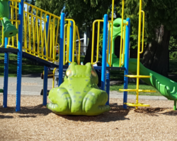 Play toy with frog slide in tot lot