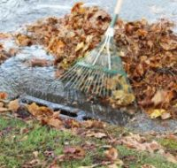 Fall and Winter Storm Clean-Up