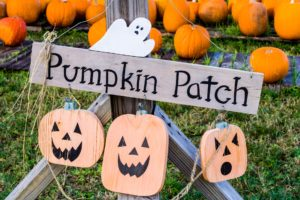 Wooden Pumpkin Patch Sign
