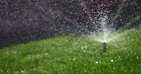 Spray sprinkler